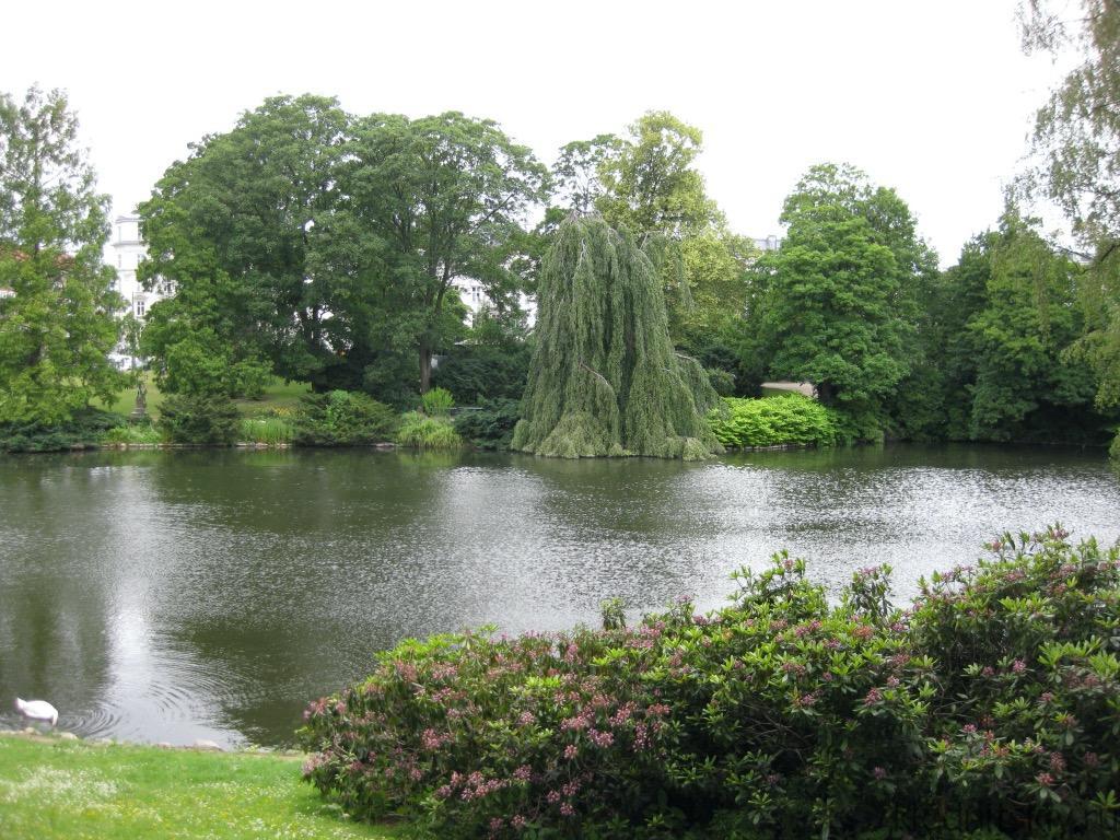Ботанический Сад, Копенгаген, Дания